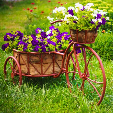 Онлайн Магазин за Цветя София 8-ми Март Св.Валентин